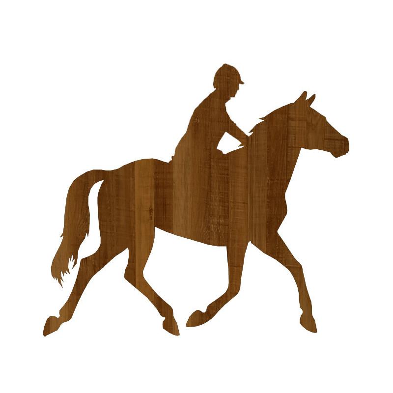 poney 01