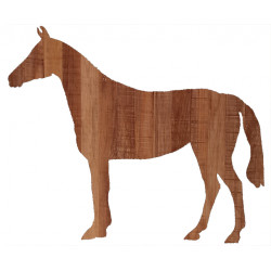 CHEVAL 01 BIS